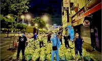 Những 'Chuyến xe nghĩa tình' hướng về TP. Hồ Chí Minh