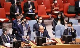 Việt Nam và Hội đồng Bảo an Liên hợp quốc: Những bước tiến dài khẳng định vị thế